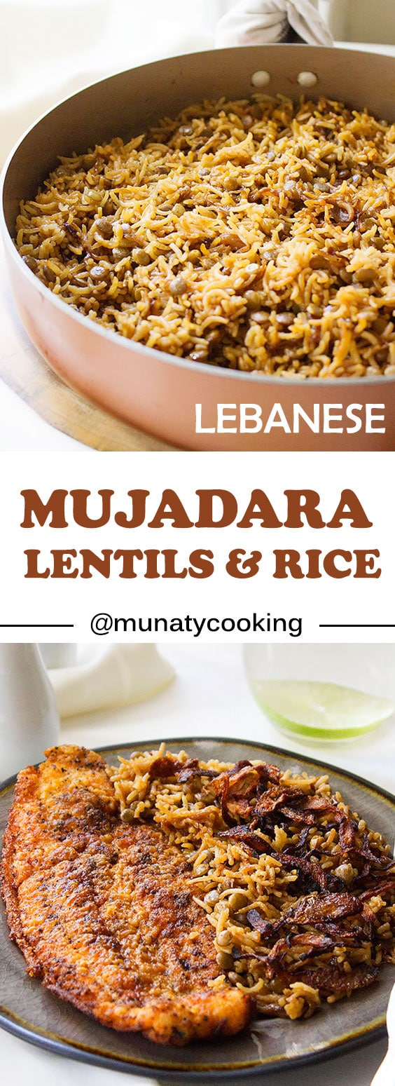 Mujadara is a Middle Eastern side dish or can be a meal if served with salads. Enjoy A healthy dish that has flavors coming from the stock, olive oil, and caramelized onion. Watch the video tutorial. #veganrecipes #veganfood #healthydinner #mujadara #middleeasternrecipes