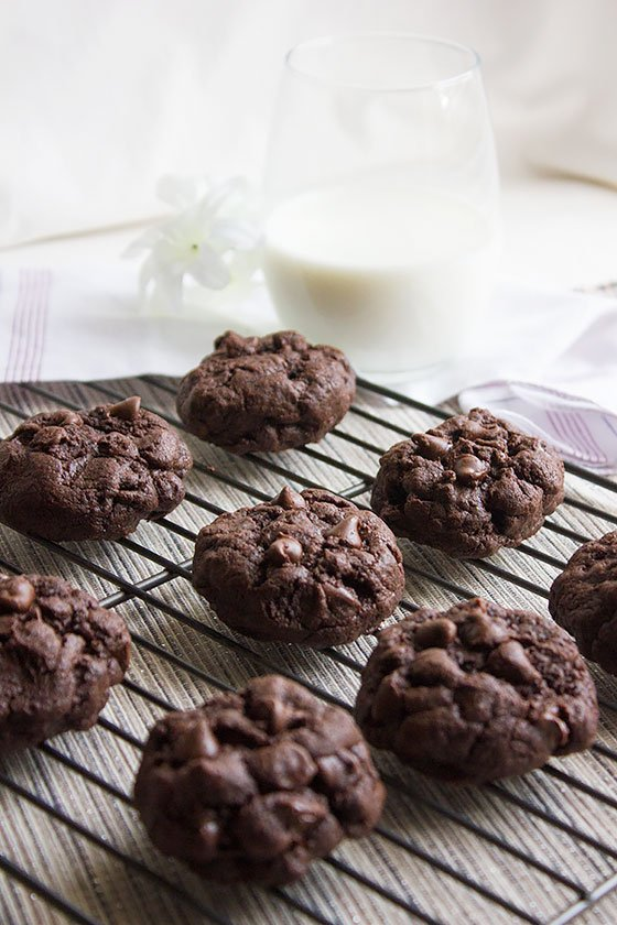 chocolate-chocolate-chip-cookies 1