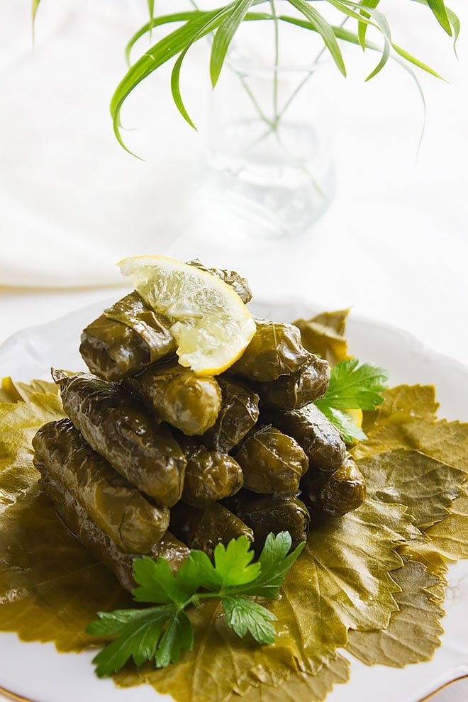stuffed grape leaves 1