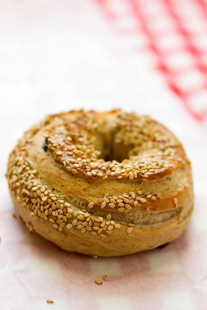 Single American bagel topped with sesame seeds.