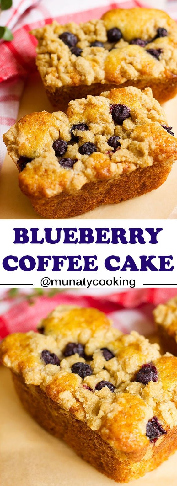 Blueberry coffee cake is another delicious and easy to make coffee cake. Light mini coffee cakes that can please your guests. #coffeecake #cake #cakerecipe