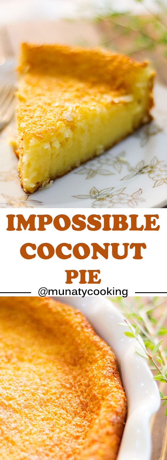 Impossible Coconut Pie is an easy and impressive dessert made in a blender. A layer of roasted coconut, followed by a creamy custard layer, and finally a light crust. #pie #impossiblecoconutpie #pierecipes #dessert.
