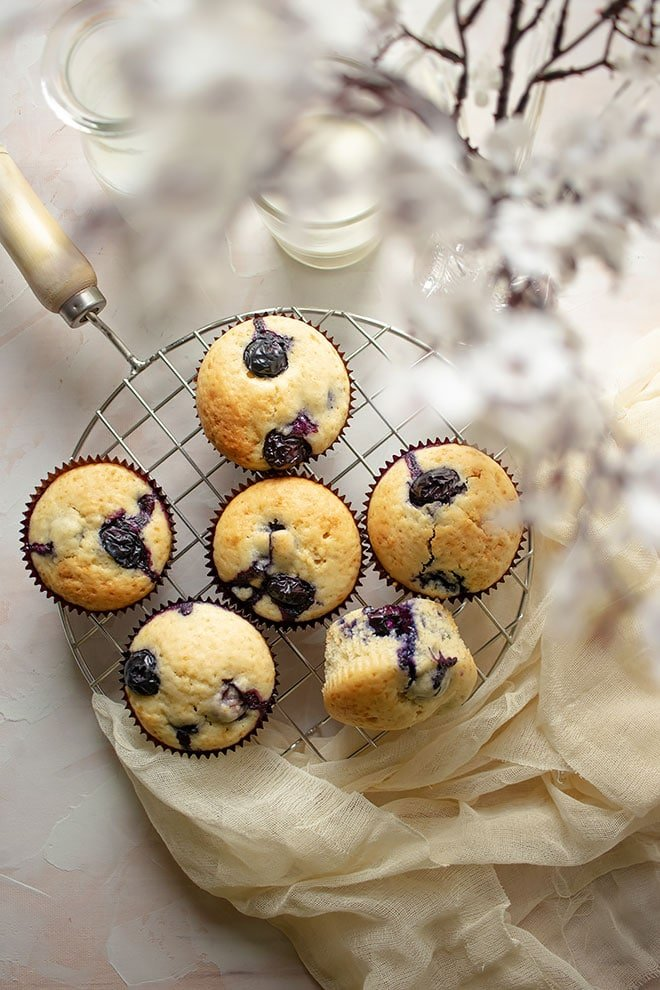 Overhead shot of blueberry muffins.