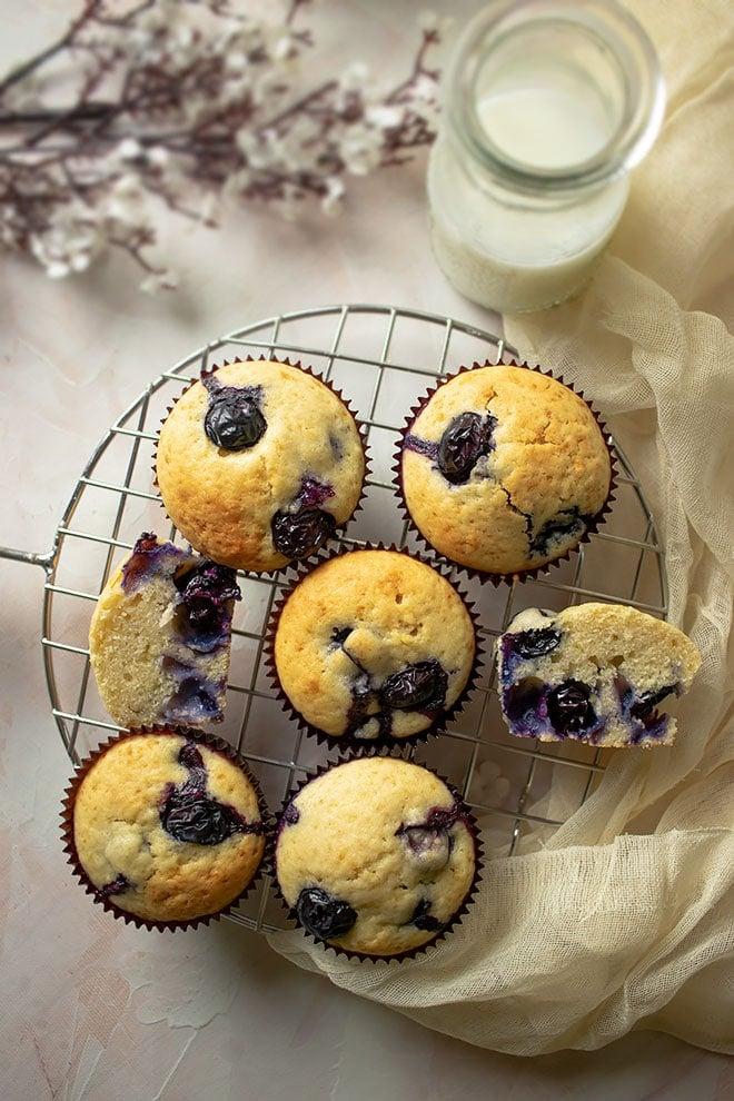 Freshly baked blueberry muffins.